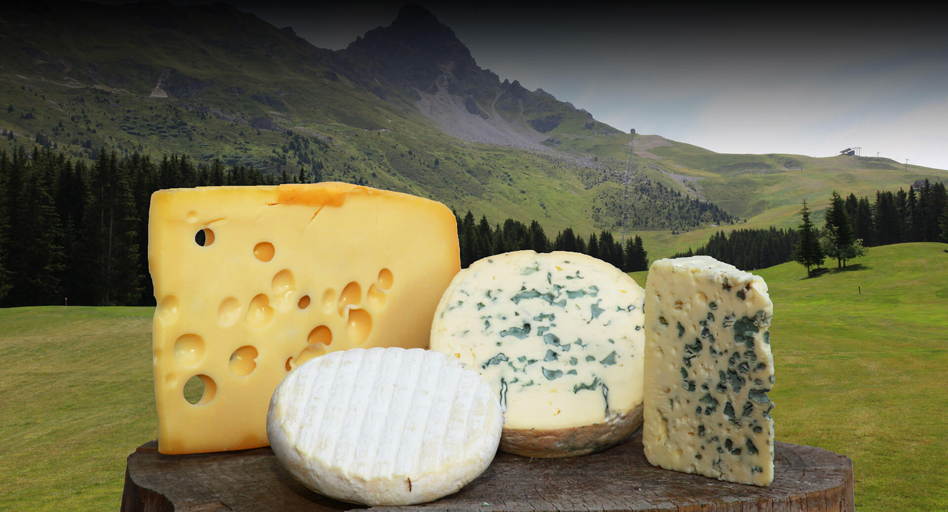 fromage auvergne